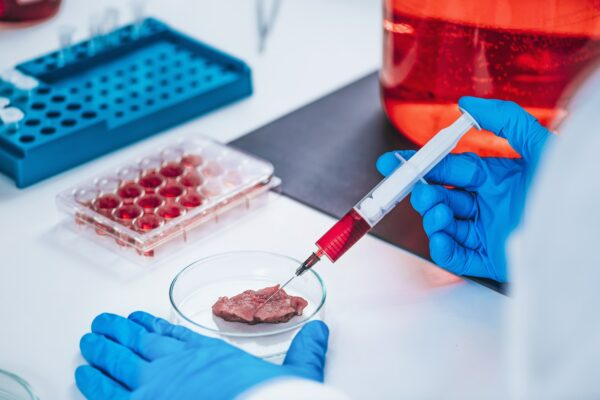 Scientist Injecting Growth Hormone into a Meat Sample