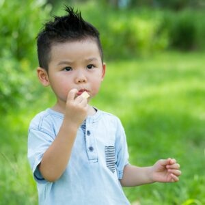 Little kid eating with snack